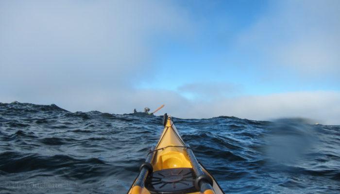 10. Kayak in Bodega Bay.