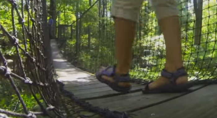 5. The Canopy Walk at Lynches River County Park - Coward, SC