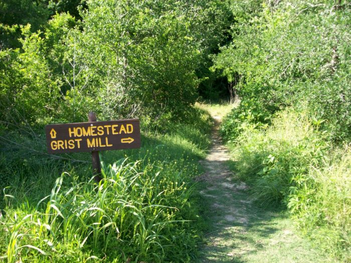 The Homestead Trail makes a 3.1 mile loop around the stunning state park.