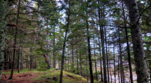 10 Rustic Spots In Maine That Are Extraordinary For Camping