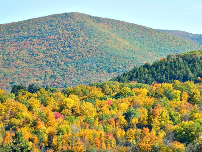Rather than views of farmland, Stony Ledge delivers stunning panoramas of brilliant foliage and wild forest.