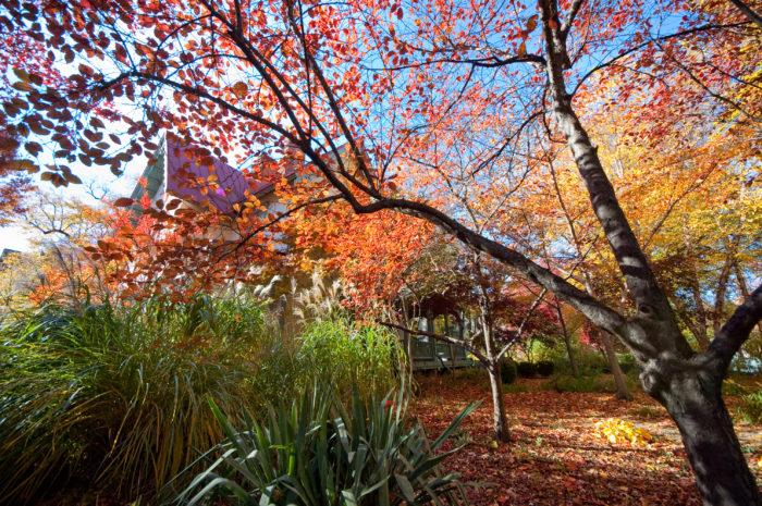 Mount Vernon - 3200 Mount Vernon Hwy, Mt Vernon, VA 22121