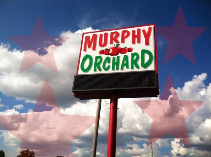 6. Murphy Orchard - Marionville