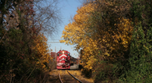 Take This Fall Foliage Train Ride Through New Jersey For A One-Of-A-Kind Experience