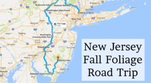Take This Gorgeous Fall Foliage Road Trip To See New Jersey Like Never Before