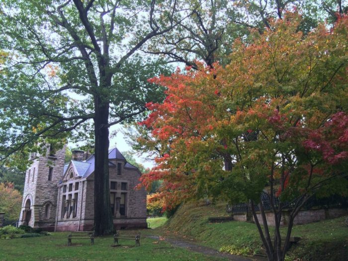 9. Mount Hope Cemetery - Rochester