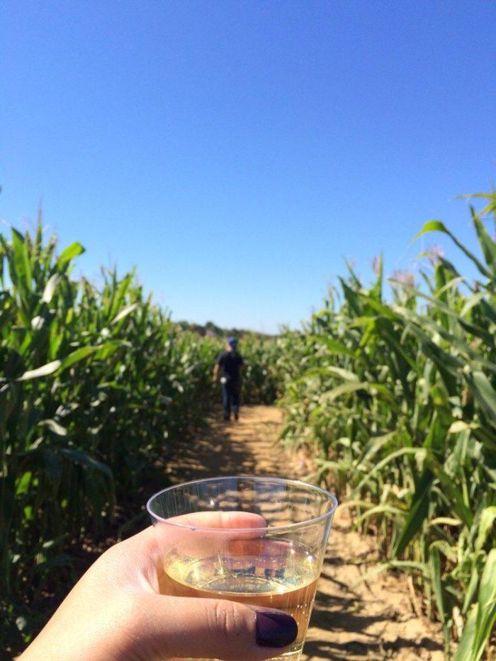 6. Harbes Family Farm - Mattituck and Jamesport