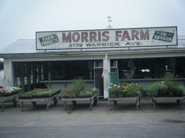 6. Morris Farm, Warwick