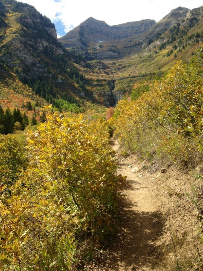 It's gorgeous here in the fall. Take this hike soon if you can - the fall leaves are getting colorful!