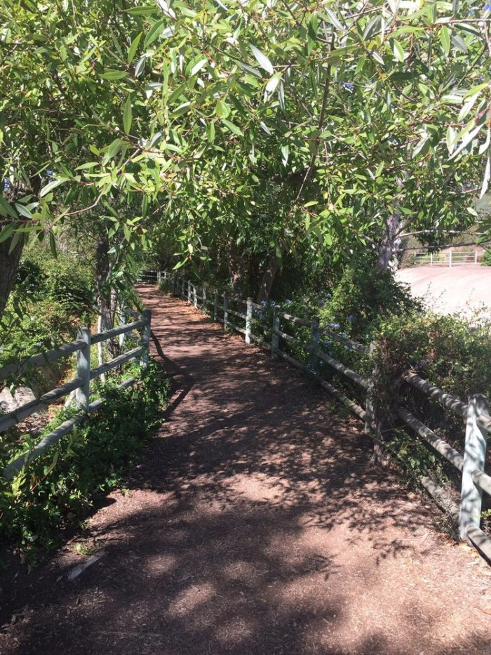 On a sunny afternoon, shaded paths will keep you cool and protected from the harsh heat of the day.