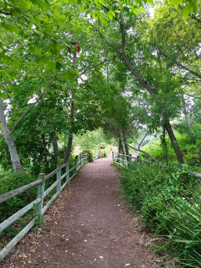 Peaceful, green and serene are three words that come to mind when you take the Oso Creek Trail.
