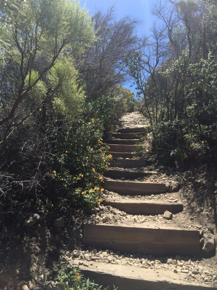 Once you see these steps, you're starting to get close to the peak. Take a deep breath and start climbing!