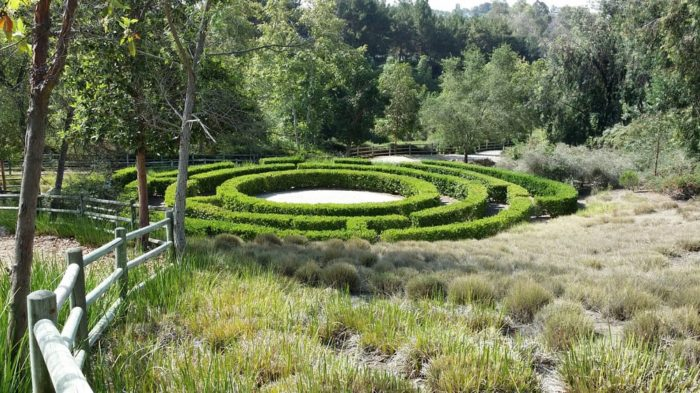 A stunning hedge maze! When you see this hedge for the first time you'll think you've accidentally stumbled inside a secret garden. And in many ways you have.