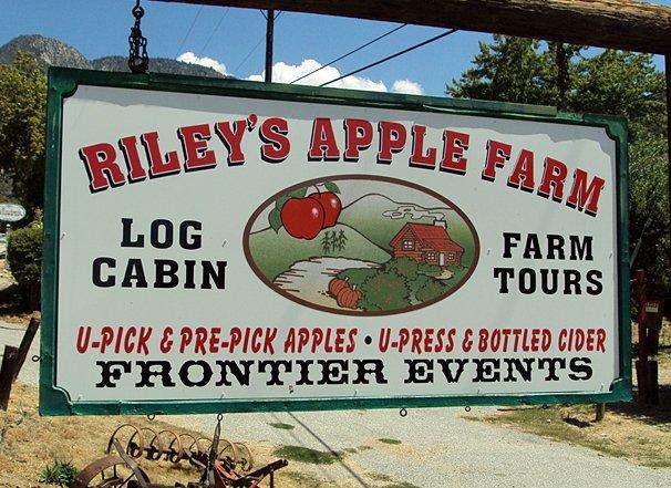 7. Riley's Apple Farm -- 12201 S Oak Glen Rd, Yucaipa, CA 92399