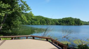 This Just Might Be The Most Beautiful Hike In All Of Nashville