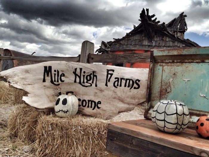 9. Mile High Farms (Bennett)