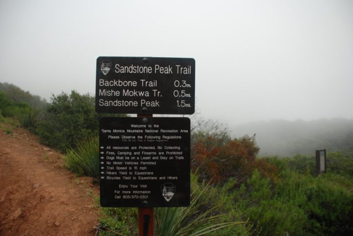 Find the trail head on Yerba Buena road, about one mile past Circle X Ranch.