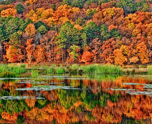 6. Clayton Lake State Park