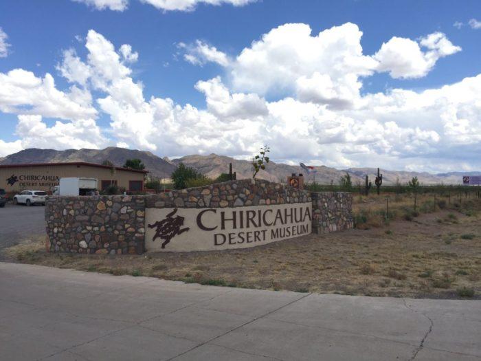 8. Chiricahua Desert Museum, Rodeo