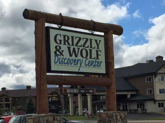 The Grizzly & Wolf Discovery Center is located at 201 South Canyon, in West Yellowstone.