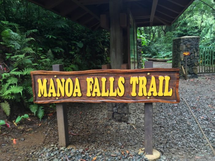 The trailhead is located at the top of Manoa Road.