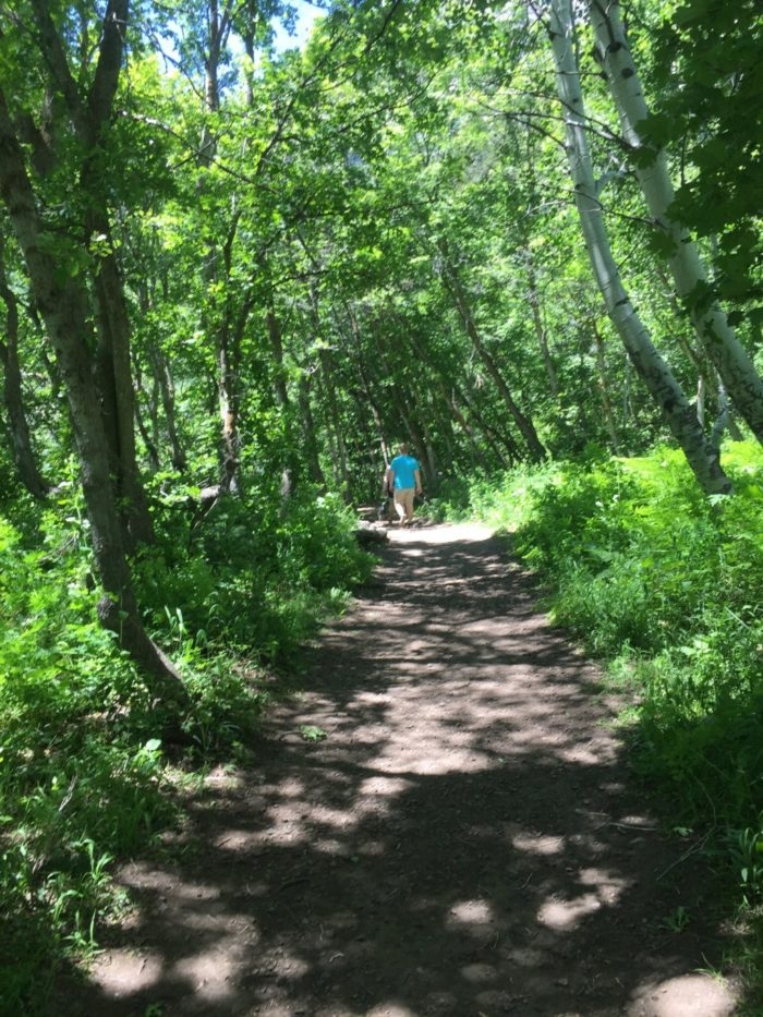 The hike is rated as easy and is suitable for most hikers. You can even take your dog on this trail!