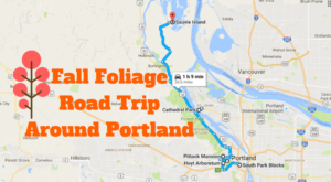 You'll Want To Take This Gorgeous Fall Foliage Road Trip Around Portland This Year