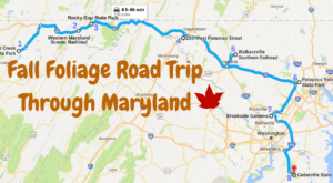 Take This Gorgeous Fall Foliage Road Trip To See Maryland Like Never Before