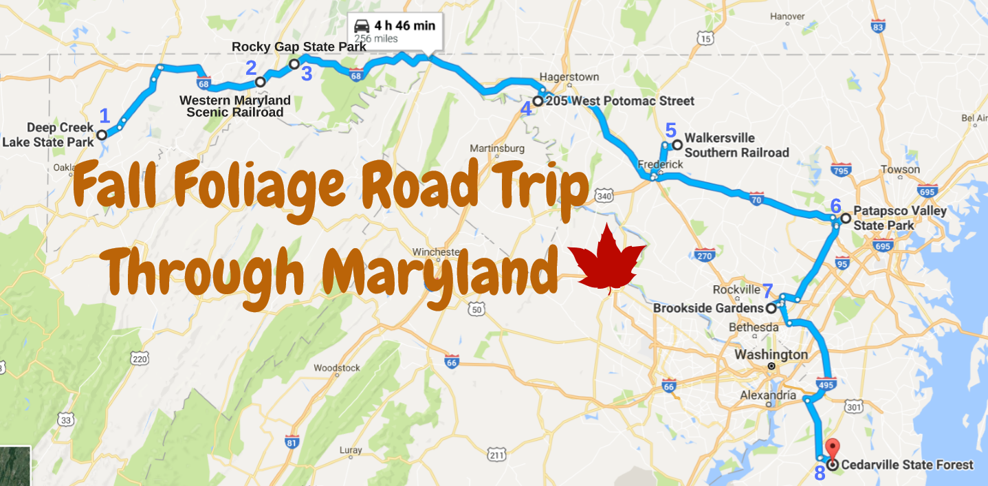 The Ultimate Fall Foliage Road Trip Through Maryland