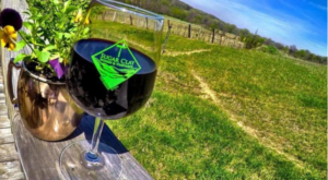 There's A Wine Trail In Iowa And It's Everything You've Ever Dreamed Of