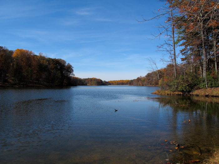 1. Seneca Creek State Park