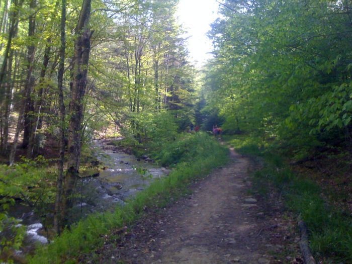 6 Best Trails for Hiking in Washington DC If You Love The ...