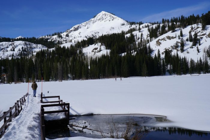 In the winter, the trail is perfect for snowshoeing and winter fun.