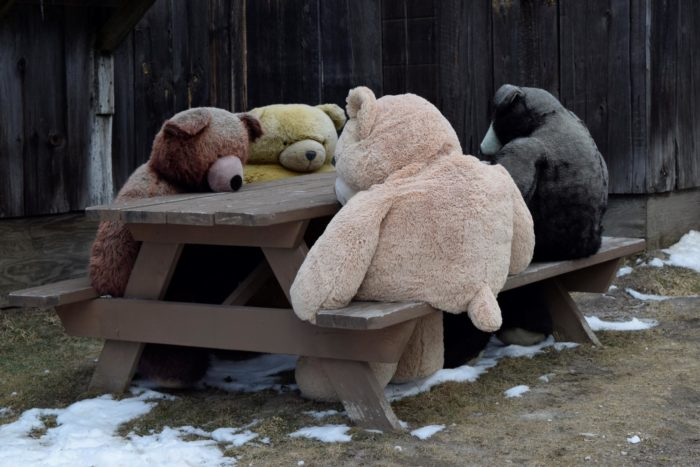 Relax with the bears outside.