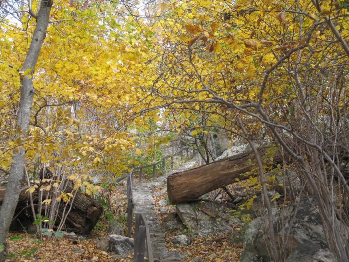The Northern Peaks Trail does have its ups and downs as it traverses the different peaks of the mountain and there are some rocky areas that require careful footing.