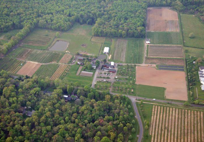 Terhune Orchards Vineyard & Winery - 330 Cold Soil Road, Princeton