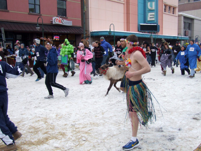 4. Run with the reindeer at Fur Rondy.