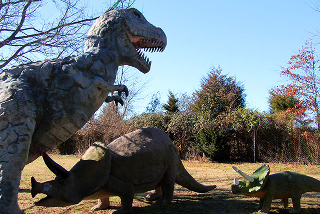 trex_triceratops513c31f33ba36