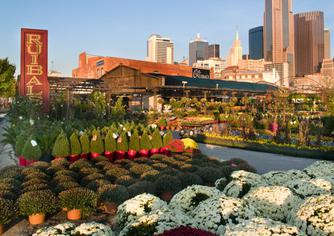 The Dallas tour is an 80 minute ride that stops at over 15 of Dallas' most famous attractions, including the Dallas Farmers Market...