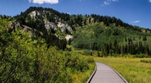 This Easy Alpine Hike In Utah Is Perfect For Everyone