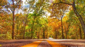 10 Country Roads In Mississippi That Are Pure Bliss In The Fall