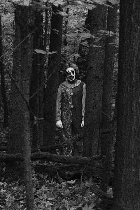 10. Terror in the Woods, Columbia