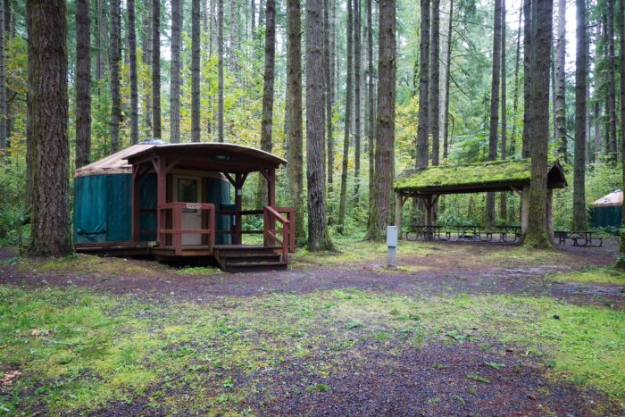 8 cozy cabins near portland perfect for a fall getaway for Oregon state parks yurts and cabins