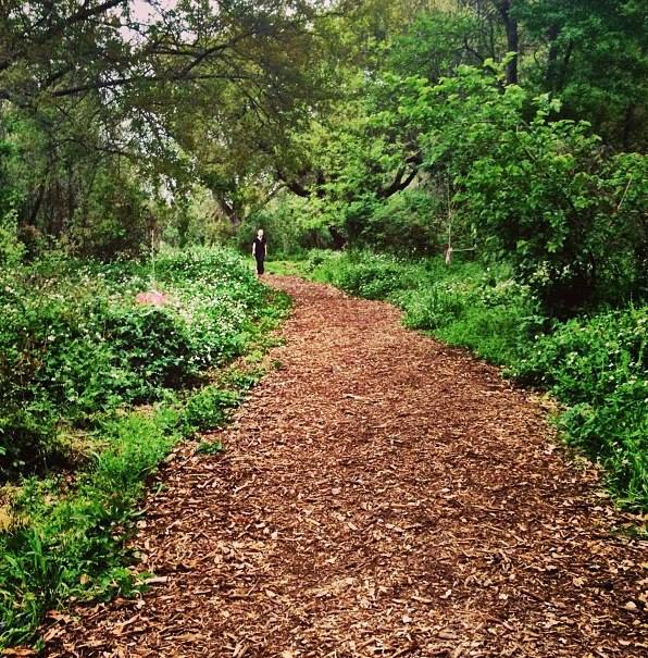All of the trails are regularly mulched by volunteers, keeping this area accessible year-round.