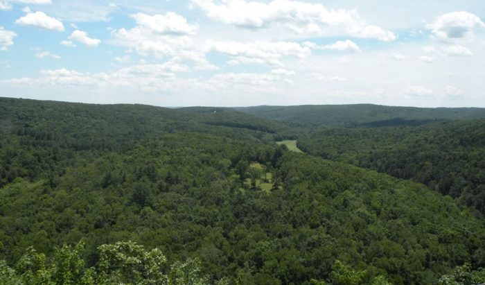 Located in Washington, the Steep Rock Preserve is lush with natural growth and beauty.