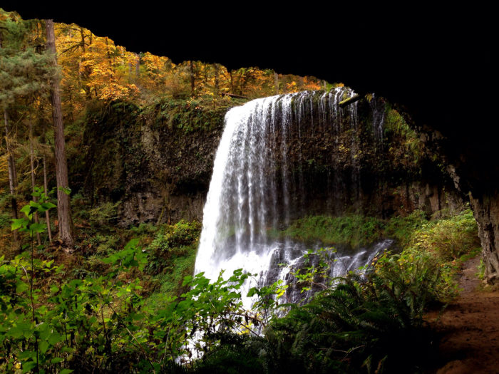 Perhaps the most incredible hiking trail in the park is the legendary Trail of Ten Falls. This gorgeous trail weaves through the woods, passing by (and sometimes behind) 10 breathtaking waterfalls.