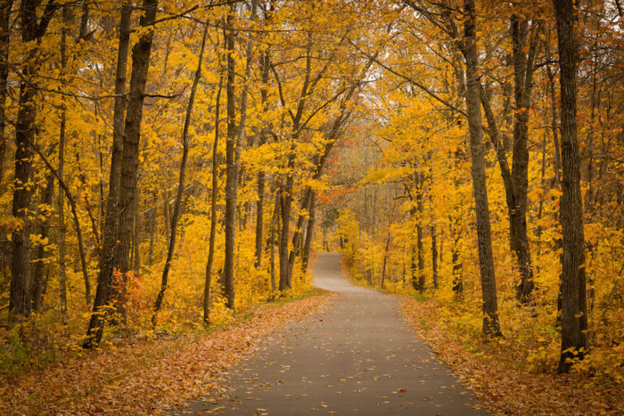 10. Wilderness Drive in Itasca State Park