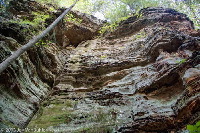 The deep valley and picturesque cliffs were formed by erosion caused by Buck Run, according to the Hocking Hills State Park website.