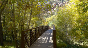 These 8 Easy Hikes In Arizona Will Show You The Best Views Of The Fall Season
