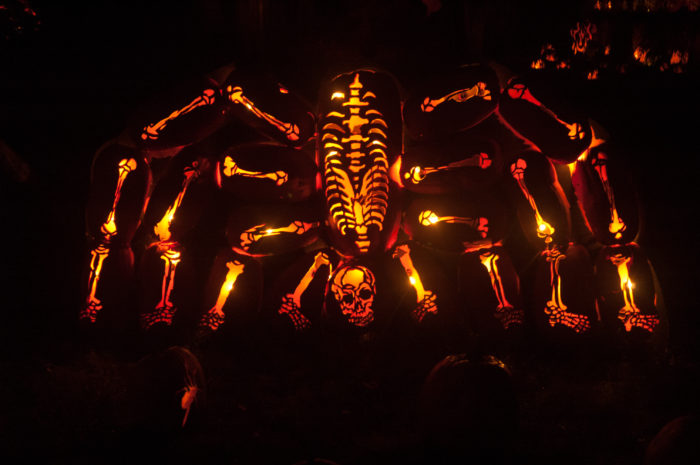 So, how much will it cost to get into The Great Jack O'Lantern Blaze if you can get your hands on tickets?